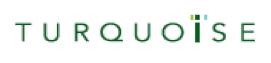 Turquoise-logo